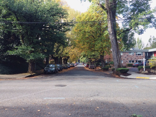 Just a pretty street, fall is really here!